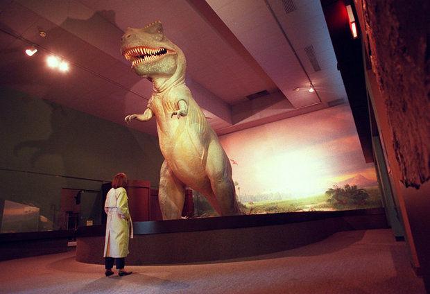 T Rex 40